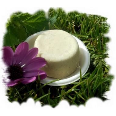 Volumen Brennnessel Shampoo mit Meersalz + Apfelessig