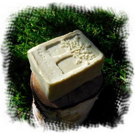 Kokos Limette Duschseife