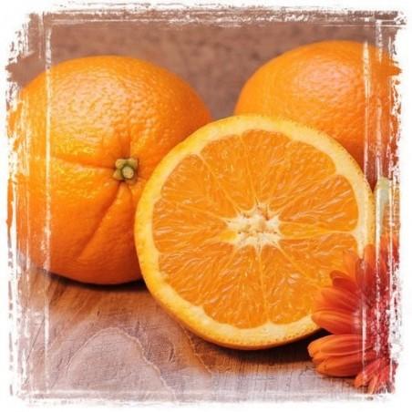 Creamy Orange Butter Bodybutter